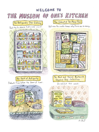 roz-chast-full-page-color-including-the-refrigerator-door-gallery-the-cabinet-o-new-yorker-cartoon